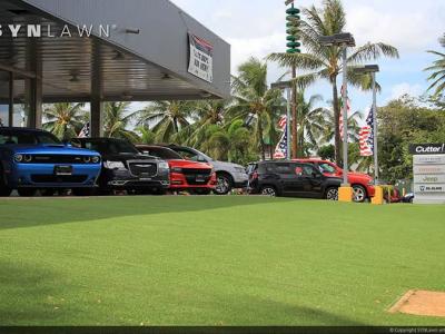 SYNLawn-artificial-grass-commercial-auto-car-dealer-sales-center