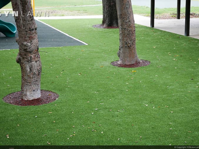 SYNLawn-artificial-grass-commercial-public-park-with-tree-root-zone-1