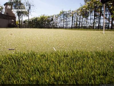 SYNLawn-artificial-grass-golf-back-yard-putting-green-fringe
