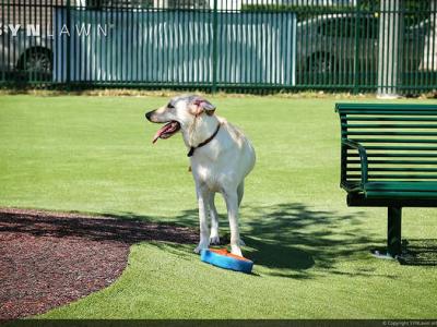 SYNLawn-artificial-grass-pets-public-dog-park-1